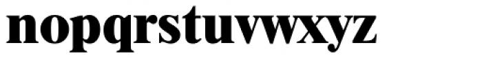 Times LT Std ExtraBold Font LOWERCASE