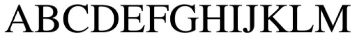 Times LT Std Roman Font UPPERCASE