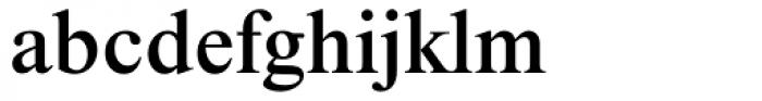 Times NR MT Medium Font LOWERCASE