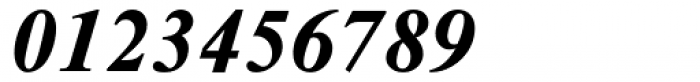 Times NR Seven MT Bold Italic Font OTHER CHARS