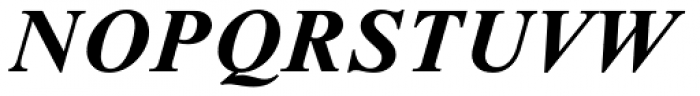 Times NR Seven MT Bold Italic Font UPPERCASE