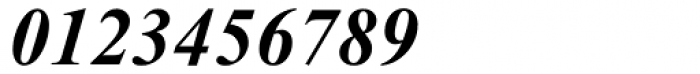 Times New Roman Cyrillic Bold Inclined Font OTHER CHARS