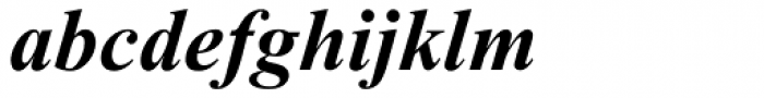 Times New Roman Cyrillic Bold Inclined Font LOWERCASE