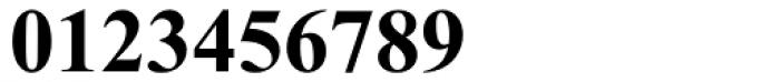 Times New Roman Cyrillic Bold Font OTHER CHARS