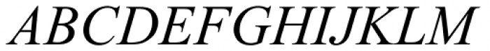 Times New Roman Cyrillic Inclined Font UPPERCASE