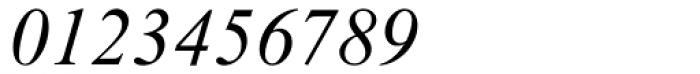Times New Roman MT Italic Font OTHER CHARS
