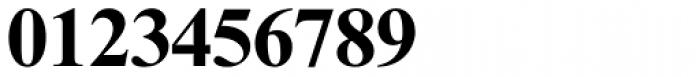 Times New Roman MT Std Bold Font OTHER CHARS