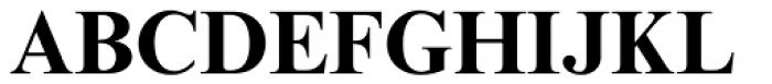 Times New Roman MT Std Bold Font UPPERCASE