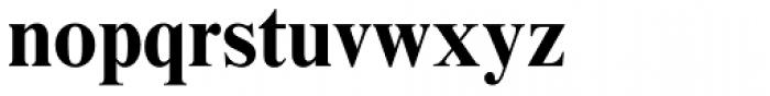 Times New Roman MT Std Bold Font LOWERCASE