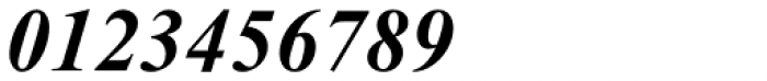 Times New Roman PS Pro Bold Italic Font OTHER CHARS