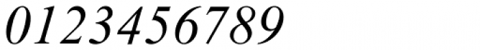 Times New Roman PS Pro Italic Font OTHER CHARS