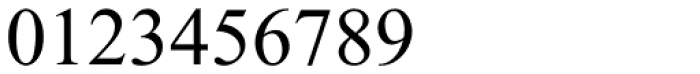 Times New Roman PS Pro Regular Font OTHER CHARS