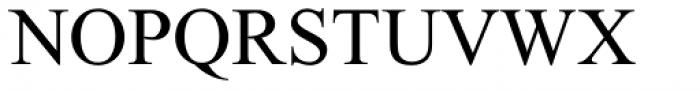 Times New Roman PS Pro Regular Font UPPERCASE