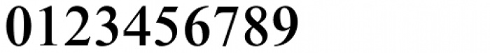 Times New Roman Pro Medium Font OTHER CHARS