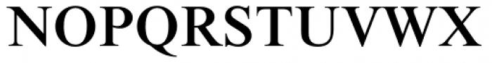 Times New Roman Pro Medium Font UPPERCASE