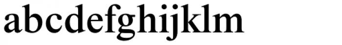 Times New Roman Pro Medium Font LOWERCASE
