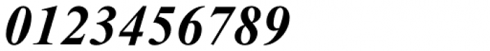 Times New Roman Pro PS Bold Italic Font OTHER CHARS