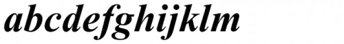 Times New Roman Pro PS Bold Italic Font LOWERCASE