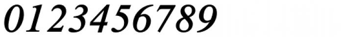 Times New Roman Pro SemiBold Italic Font OTHER CHARS