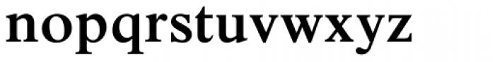 Times New Roman Pro SemiBold Font LOWERCASE