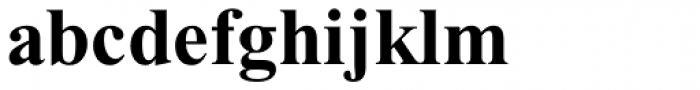 Times New Roman Std PS Bold Font LOWERCASE
