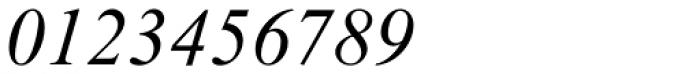Times New Roman Std PS Italic Font OTHER CHARS