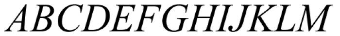 Times New Roman Std PS Italic Font UPPERCASE