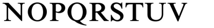 Times New Roman Std Seven Font UPPERCASE
