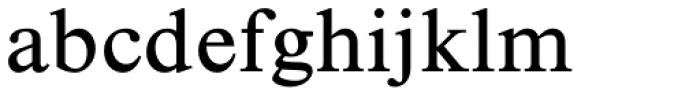 Times New Roman Std Seven Font LOWERCASE