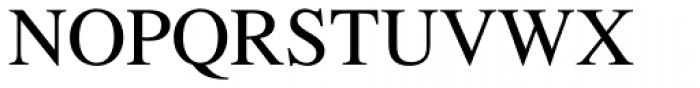 Times Pro Roman Font UPPERCASE