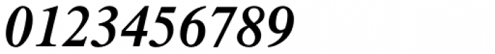 Times Pro SemiBold Italic Font OTHER CHARS