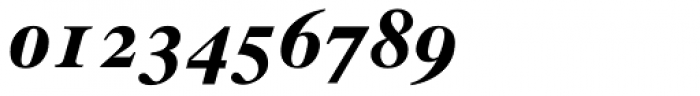 Times Ten Bold Italic Oldstyle Figures Font OTHER CHARS