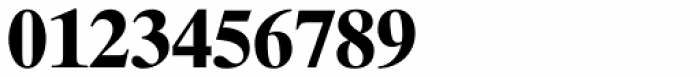 Times Ten Cyrillic Bold Font OTHER CHARS