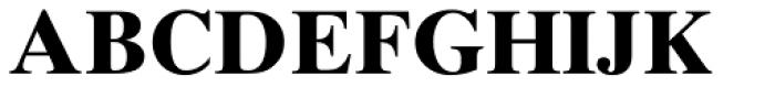 Times Ten Cyrillic Bold Font UPPERCASE