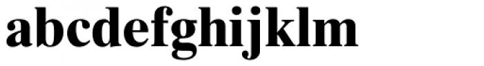 Times Ten Cyrillic Bold Font LOWERCASE