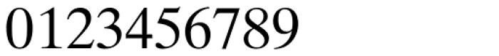 Times Ten Cyrillic Roman Font OTHER CHARS