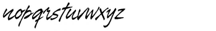 Tiza Font LOWERCASE