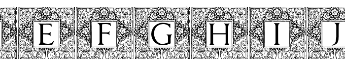 Topiary_Initials Font LOWERCASE
