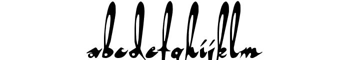 Tortuga Font LOWERCASE