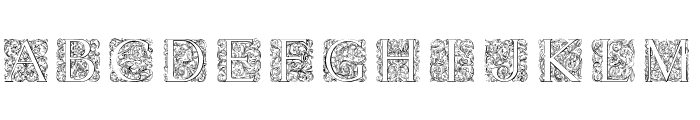 Torynitialen Font LOWERCASE