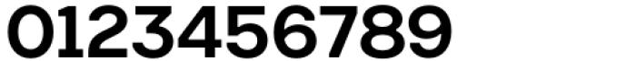 Toboggan Medium Font OTHER CHARS