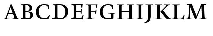 TP Mincho Middle B Font UPPERCASE
