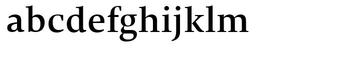 TP Mincho Middle B Font LOWERCASE