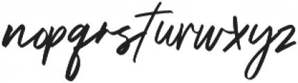 Triester Vector ttf (400) Font LOWERCASE