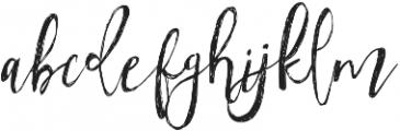 Tropical Nights Alternates otf (400) Font LOWERCASE