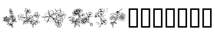 Traditional Floral Design III Font UPPERCASE