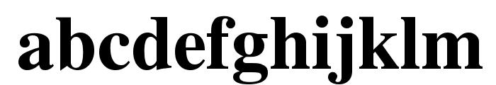 Tribune Bold Font LOWERCASE