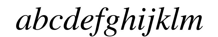 Tribune Italic Font LOWERCASE