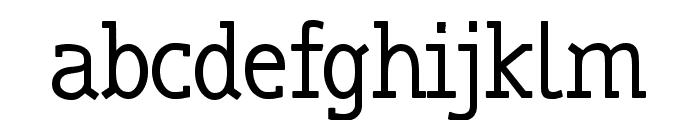 truebo serif Font LOWERCASE