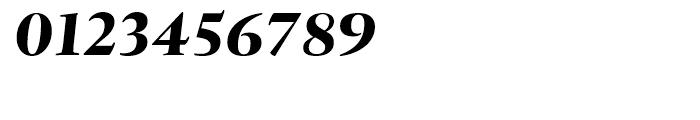 Tramuntana Pro Subhead Pro Heavy Italic Font OTHER CHARS